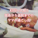 NICU 保育器 赤ちゃん